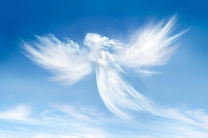 Anjos de asas?