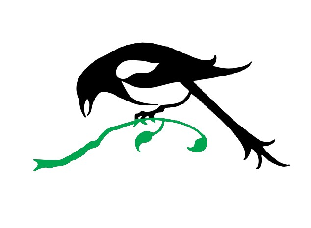 business logo design bird contest