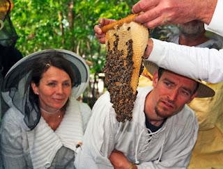 Interessierte Imker in spe bei einem Imkerkurs des gemeinnützigen Vereins Mellifera e.v.. Foto: Mellifera e.V.