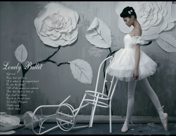 Wedding Dress With Ballet Dream The Hairs