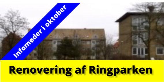 Infomøder om renoveringen i Ringparken
