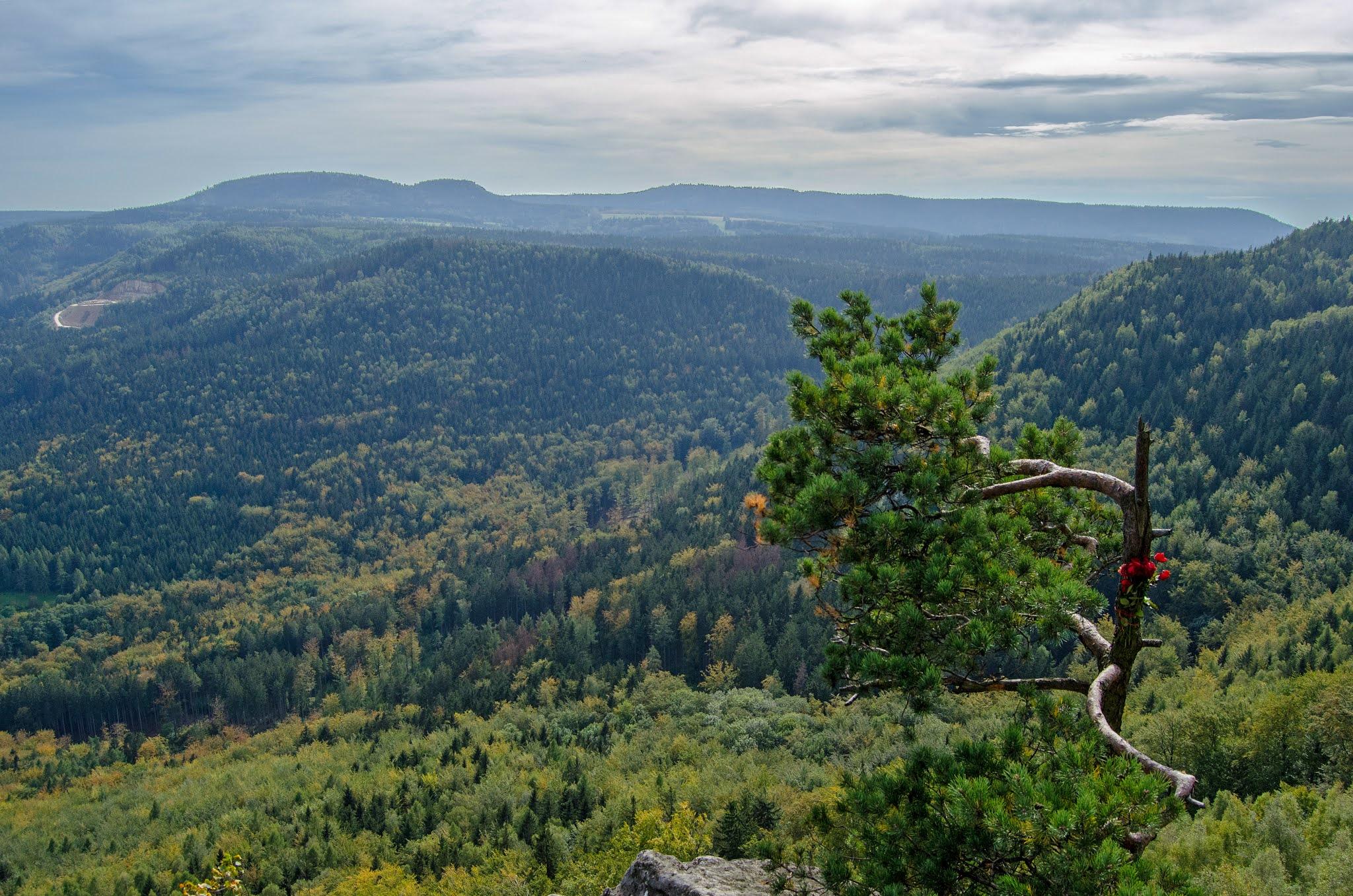 góry | krajobraz | Czechy | podróże | Broumovske Steny