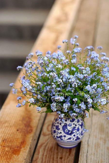 buchet flori de nu ma uita in vaza albastra, forget-me-not flower bouquet