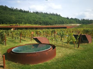 ncc noleggio conducente azienda vinicola Antinori