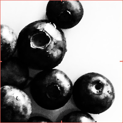 high contrast blueberries photo with viewfinder tool for my value study - by Amy Lamp