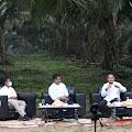 Kiat PTPN V Bangun Kebun dengan Produktivitas Sawit Muda Tertinggi di Indonesia