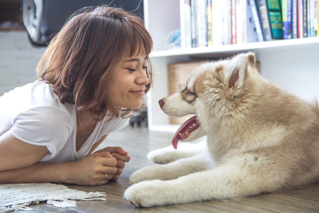 7 avantages d'avoir un chien dans votre vie