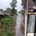 Caminhão carregado com leitões tomba na RS-168