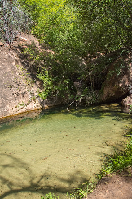 Middle Emerald Pool, Zion National Park