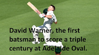 David Warner, the first batsman to score a triple century at Adelaide Oval.
