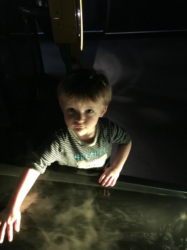 #MySundayPhoto-number-46-boy-at-Techniquest