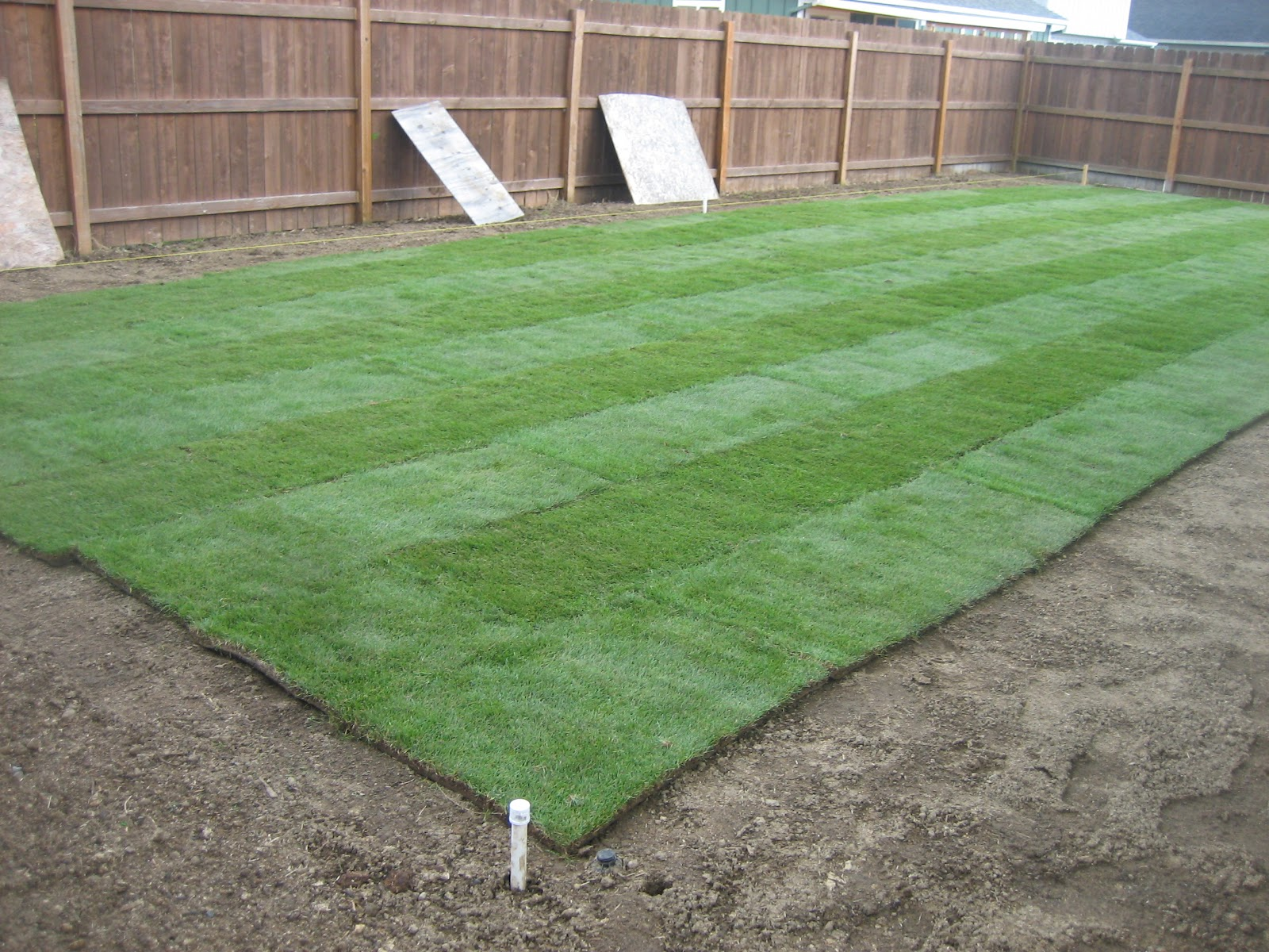 Annieoak designs the sod is down - What is 500 square feet ...