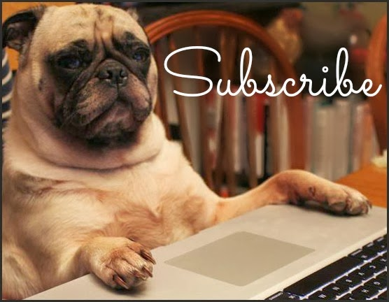 Never miss a post! Click below to subscribe by Email!