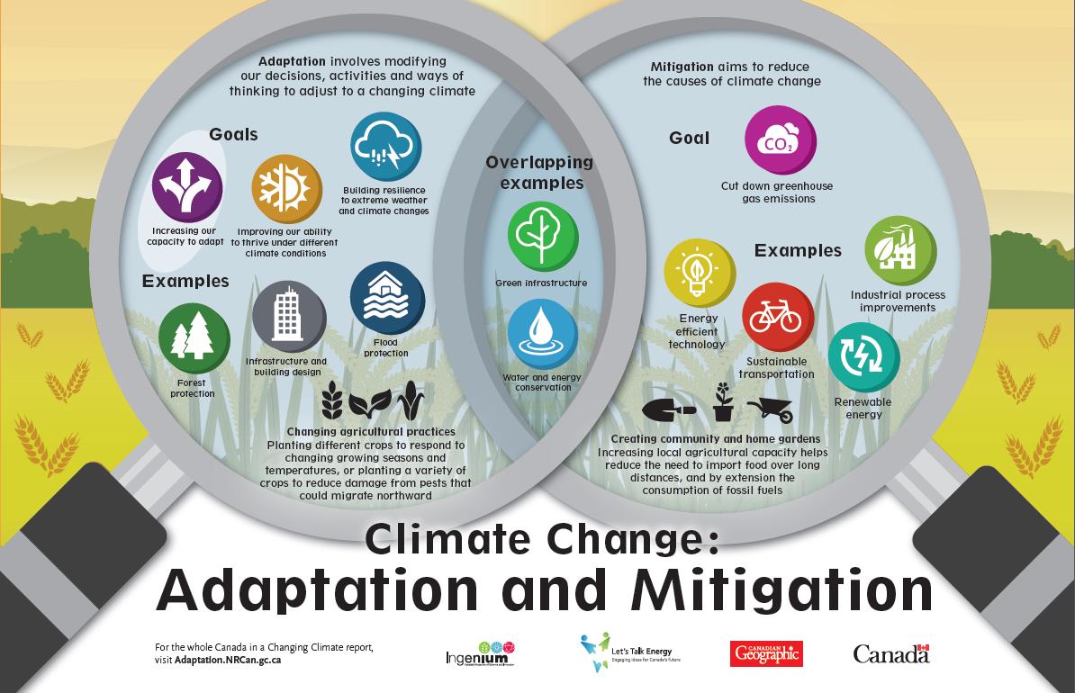 Adaption and Mitigation