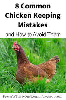 https://proverbsthirtyonewoman.blogspot.com/2017/05/8-common-chicken-keeping-mistakes-and.html
