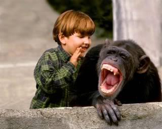 ketawa, gelak, senyum, kelakar, lawak, komedi