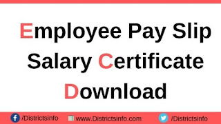 How to Download the TS Employee Pay Slip
