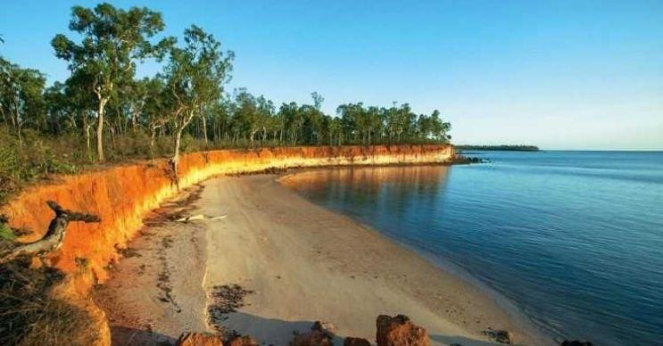 Darwin plajı zehirli denizanalarının ve timsah gibi tehlikeli canlıların yaşam alanıdır.
