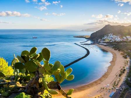 Canary islands fishing spots