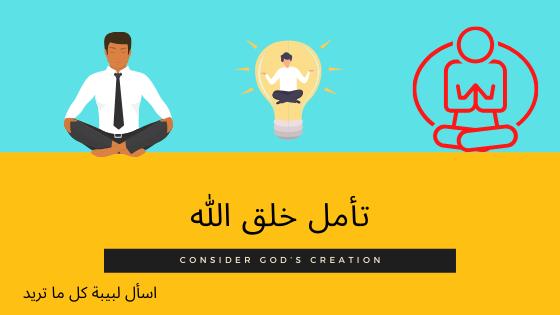 3 طرق في تأمل خلق الله - Consider God's creation