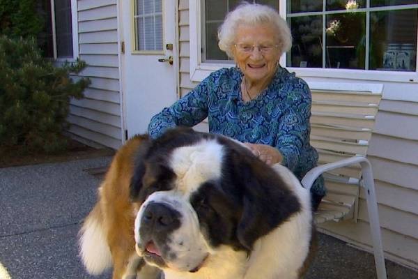 2-Year-Old Sugary Food Floppy Pet Fulfills 95-Year-Old And Also They Can't Be Divided