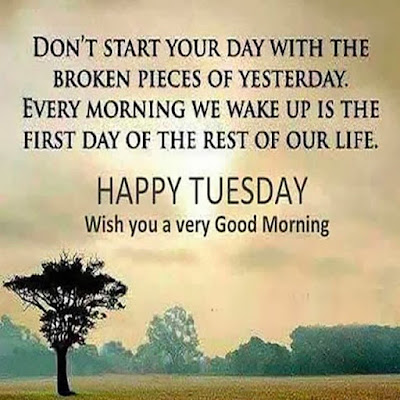 Happy good morning Tuesday Hd images and quotes downoad