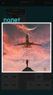в небе пролетает самолет и стая птиц его сопровождает