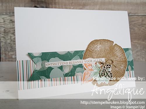 de Stempelkeuken Stampin'Up! producten koopt u bij de Stempelkeuken #stempelkeuken #stampinup #stampinupnl #stampinupdemonstrator #rootedinnature #nature #wandering #stempelen #stamping #postcrossing #echtepostiszoveelleuker #snailmail #echtepost #kaartenmaken #cardmaking #papercrafting #leaves #autumn #autumnleaves #garden #forest #stempeln #dsp #handmade #handgemaakt #diy #handmadecards #denhaag #rotterdam #delft #gouda #zuidholland #bedankt #thankyou