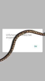 Cara menampilkan gambar ular bergerak pada hp android termudah.