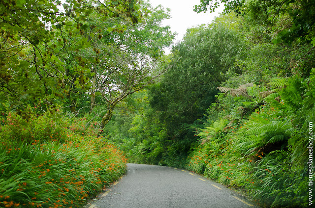 Carreteras Irlanda