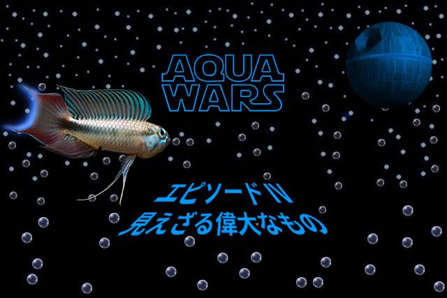 AQUA WARS episode4 見えざる偉大なもの