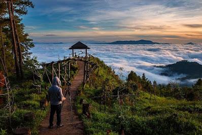 Agrowisata Pango-pango, Pesona Kebun di Atas Awan Toraja