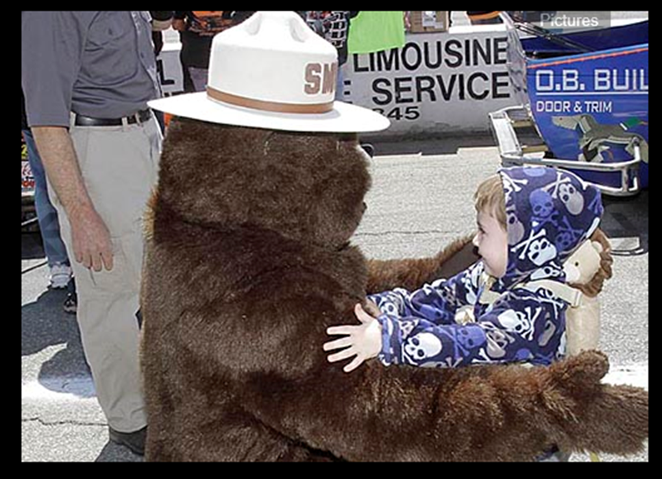 7de9bb5ea8e REMEMBER ONLY YOU CAN PREVENT WILDFIRES. Posted by Smokey Bear ...