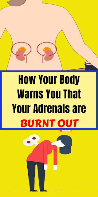 How Your Body Warns You That Your Adrenals are Burnt Out