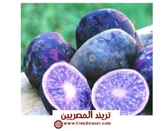البطاطس الأرجونية الزرقاء