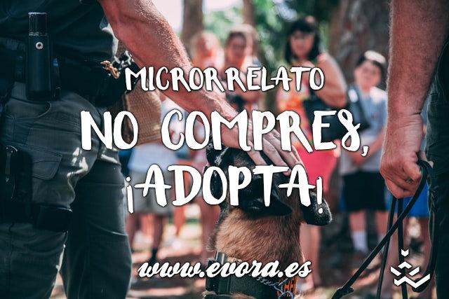 Microrrelato: No compres, ¡adopta!