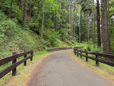 Hiking the Starvation Creek Trailhead west of Cascade Locks in Oregon.