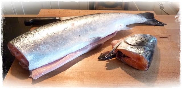 large fresh whole salmon
