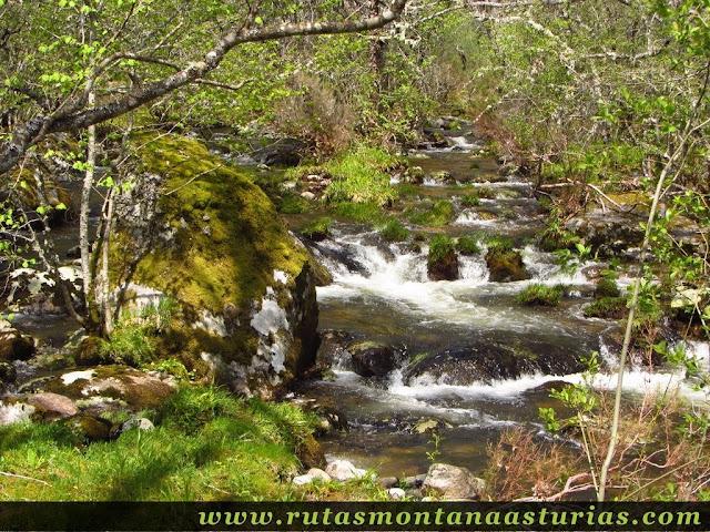 Río de las truchas, Sotillo de Sanabria