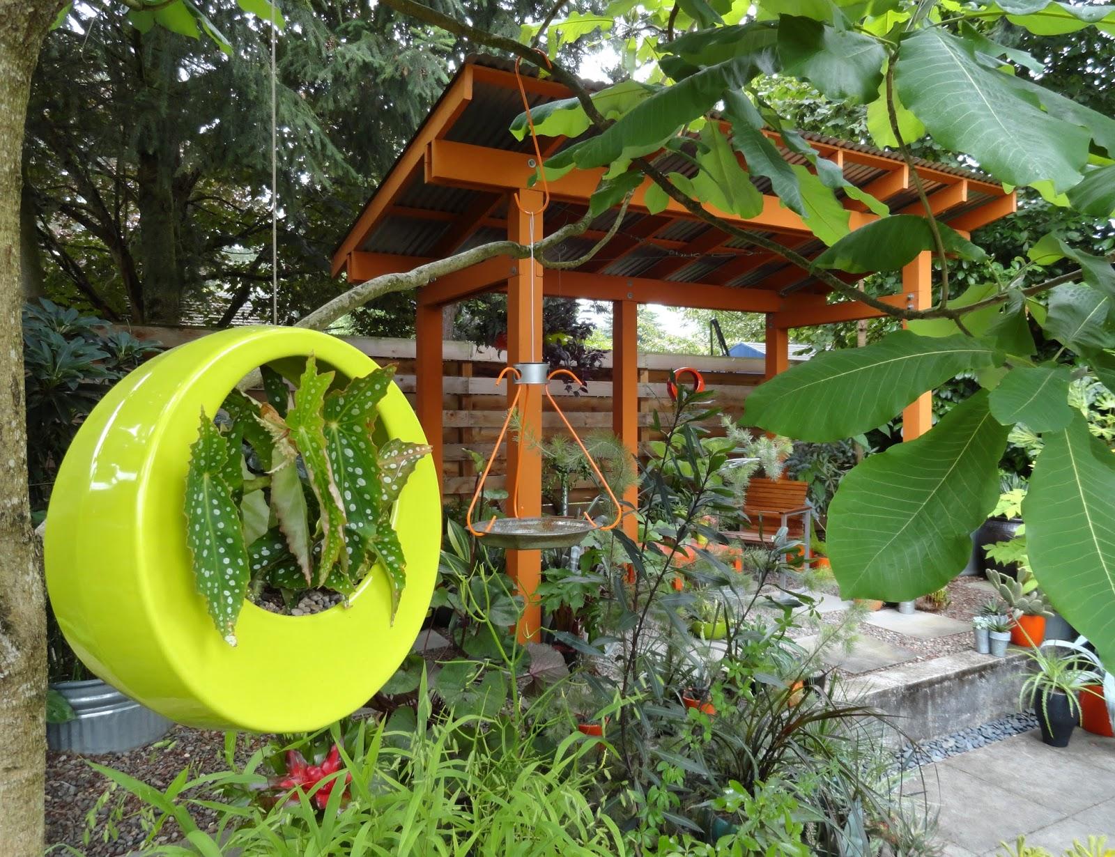Danger Garden Bromeliad Dish Garden Take 1