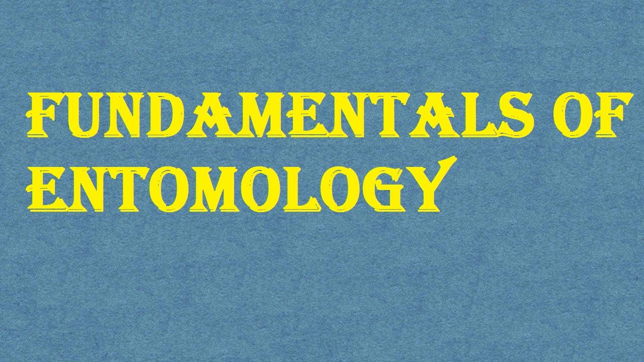 Fundamentals of Entomology ICAR E course Free PDF Book Download e krishi shiksha