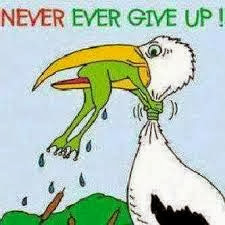 Never-ever-give-up-frog-bird
