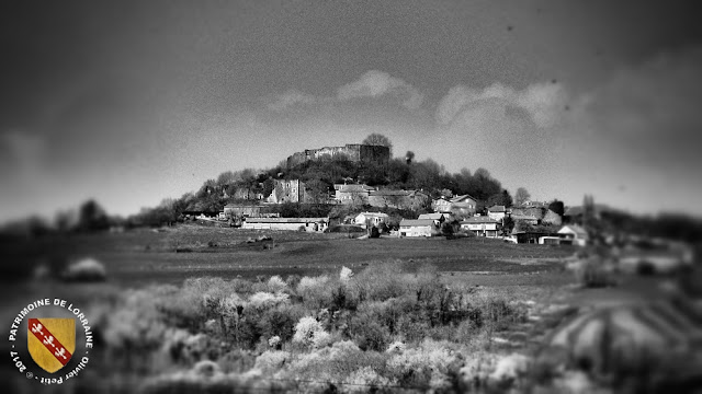 MOUSSON (54) - Le château et le village fortifié