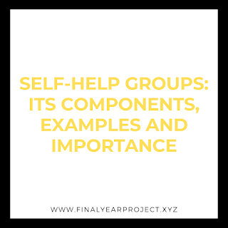 SELF-HELP GROUPS ITS COMPONENTS, EXAMPLES AND IMPORTANCE