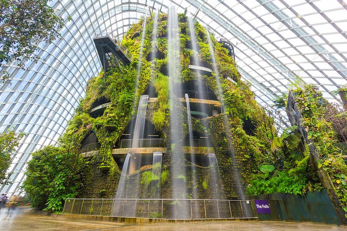Облачный лес в Сингапуре