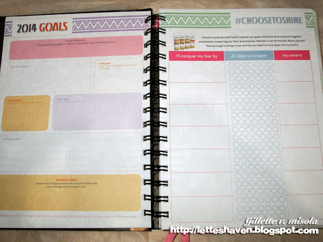 BDJ Planner 2014 Goals