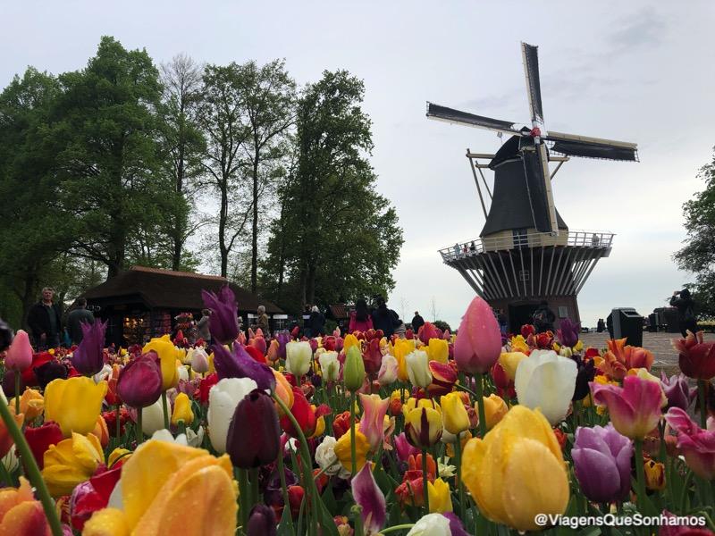 Parque das tulipas na Holanda