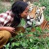 Cinta mati pada Sholeh, harimau seberat 178 kg ini selalu minta disuapin mi instan