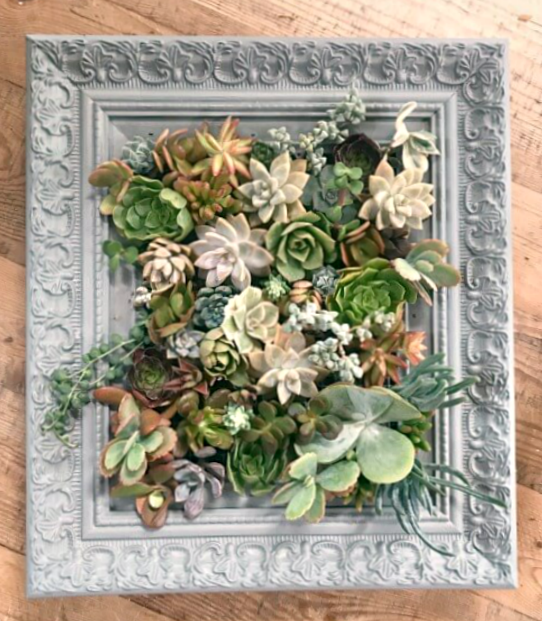 Beautiful Vintage Vertical Succulent Planter