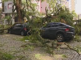 O vento derrubou árvores nas ruas , avenidas e parques de Porto Alegre-RS, Brasil.